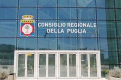 Regionali, ecco i seggi per il collegio di Bari: bene il Pd, ce la fa Laricchia