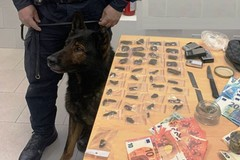Bari, nascondeva hashish e marijuana in casa: arrestato 23enne