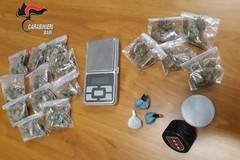 Palo del Colle, scoperto con 11 dosi di marijuana. Denunciato 38enne