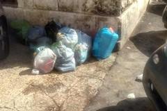 Bari vecchia, abbandona i rifiuti in strada. Decaro: «Dopo qualche giorno l'abbiamo beccata»