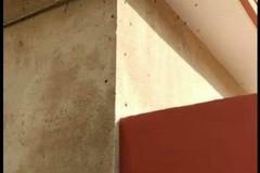Bari, immobile invaso dalle blatte in viale Japigia