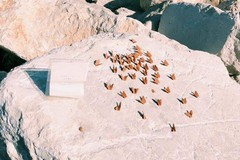 Mola di Bari, dura solo una settimana la scultura sugli scogli