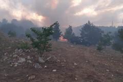 Continua a bruciare la provincia di Bari, fiamme ad Alberobello
