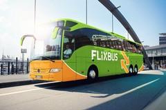 Fase 2, dopo il lockdown tornano sulle strade di Puglia gli autobus Flixbus