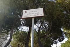 Japigia tra rifiuti ed erbacce, ecco il 'non' giardino tra via Troisi e Gentile