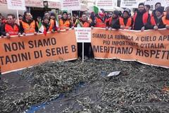 Roma si colora di arancione, la protesta della Puglia raccontata in diretta
