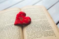 Bari per san Valentino festeggia l'amore per i libri
