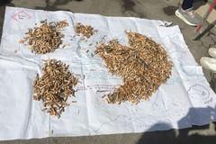World Clean Up Day, a Bari raccolti chili di mozziconi di sigaretta, reti da pesca e plastica