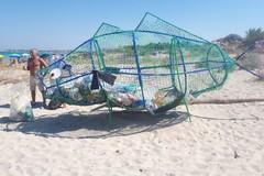 Pulizia delle spiagge, a Bari arriva il pesce mangiaplastica