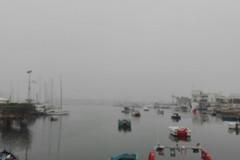 Bari sparisce, la nebbia avvolge la città