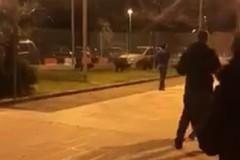San Paolo, in un video la passeggiata dei cinghiali per il quartiere
