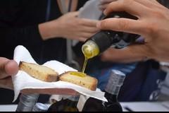 Olio straniero spacciato per pugliese su scaffali e ristoranti