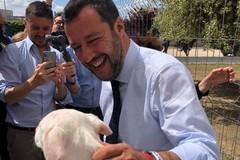 Salvini al canile sanitario di Bari
