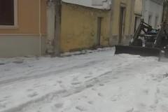 Maltempo in Puglia, per grandinata record in Salento, angurie distrutte