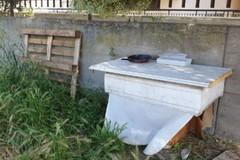 Carbonara, sterpaglie e rifiuti ingombranti in via Livatino. La denuncia di Sos Città