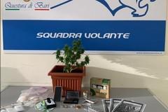Bari, trovato con la droga in via Caldarola. Arrestato 21enne
