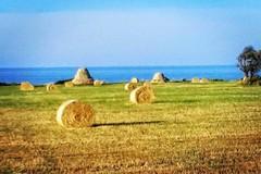 Costa Ripagnola, la Commissione della Regione Puglia rinvia la discussione