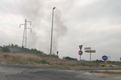 Bari, bruciano ancora le campagne. Fumo nero al San Paolo