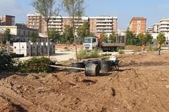 Bari, al parco ex Rossani arrivano nuovi alberi
