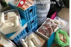 Bari, Guardia costiera multa due pescherie e un ristorante: pesce non tracciato