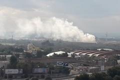 Bari, bruciano le campagne a Japigia
