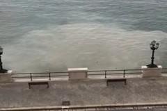 Lo sversamento in mare nei pressi del centro di Bari