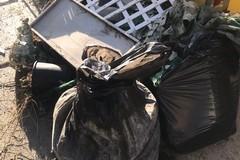 Abbandona rifiuti in strada a Bari, multato