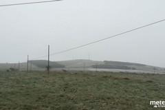 Arriva la neve in provincia di Bari. Imbiancata l'Alta Murgia