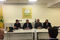 """Bilancio annata agricola in Puglia, Coldiretti: """"Anno da dimenticare"""""""