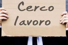 Eurostat premia la Puglia, disoccupazione in calo e 20 mila posti di lavoro in più