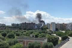 Incendi nelle campagne, il Comune cerca volontari per la vigilanza ambientale