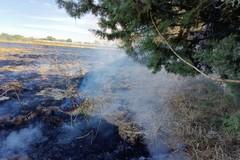 Continua a bruciare la provincia di Bari, nella serata di ieri incendio a Noicattaro