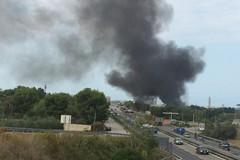 Continua a bruciare la campagna di Bari, sul posto i vigili e i rangers