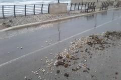 Maltempo su Bari, forti mareggiate e disagi alla circolazione ferroviaria
