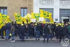 L'anno peggiore per l'olivicoltura di Puglia finisce con un sit-in di Coldiretti