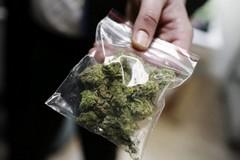 Trovato con marijuana in macchina picchia gli agenti, arrestato un 27enne a Bari