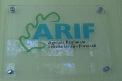 Stabilizzazione dei dipendenti Arif, revocato lo sciopero del 31 gennaio a Bari