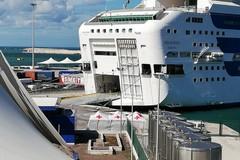 """Nave """"Rhapsody"""" sbarca a Bari con 805 migranti a bordo, in corso secondo tampone. Sarà scalo tecnico"""