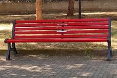 """Bari, vandalizzata la panchina rossa al San Paolo: """"Gesto di chi non ha cuore"""""""