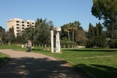 Bari, 1 milione per nuove aree verdi e manutenzione parchi. Approvati 2 accordi quadro