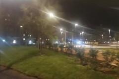 L'accensione dell'impianto luci nel parco Rossani