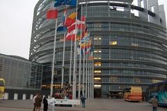 Europarlamentarie, sulla piattaforma Rousseau si votano i candidati del Movimento 5 Stelle