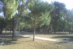 Alla pineta San Francesco l'evento della rete civica di Fesca-San Girolamo