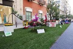 """A Bari è tempo di """"Primavera mediterranea"""". In via Argiro un grande giardino urbano"""