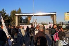 Disordini a Bari per la protesta dei pescatori, Palumbo: «Ottima gestione della polizia locale»