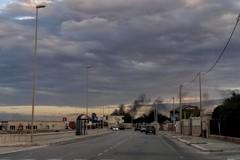 Brucia la campagna a Triggiano, fumo visibile dal lungomare di Bari