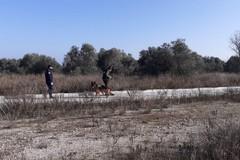 Scomparso a Capurso lo scorso ottobre, continuano le ricerche di Gaetano Addante a Bari