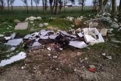 Rifiuti abbandonati nelle campagne, Coldiretti Puglia: «Il 28 percento dei reati è ambientale»