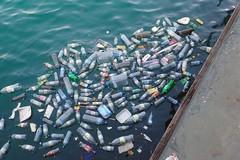 """""""Se butti male... finisce in mare"""", al via il progetto di Legambiente nelle scuole della Puglia"""