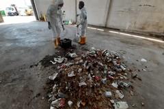 Abbandono rifiuti in strada, da Bari parte un progetto sullo studio del fenomeno